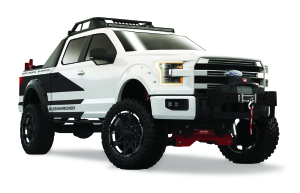 Bushwhacker Ford F-150